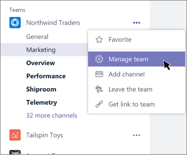 managing a team and its members in microsoft teams